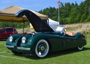 Jaguar at Show of Dreams